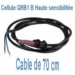 Cellule QRB1 B détecteur de flamme câble 70 cm