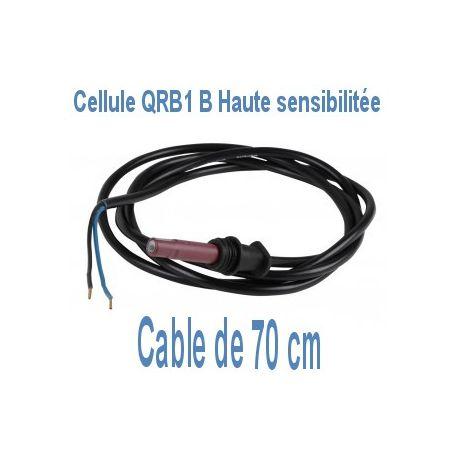 Cellule QRB1 B A068B70B détecteur de flamme câble 70 cm